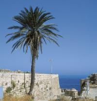 Castelo de Kyrenia (século XII). Bastión fortificado. Chipre. Ricatto/Iberfoto. Photoaisa.