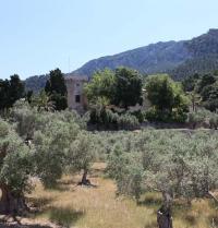 Kloster Miramar. Valldemossa, Mallorca. IRU, S.L.
